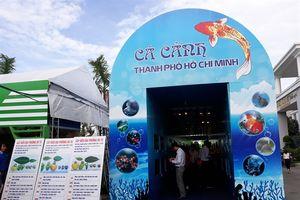 Tổ chức Ngày hội cá cảnh TP.HCM năm 2018