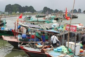 Quảng Ninh ra công điện khẩn ứng phó với bão số 4