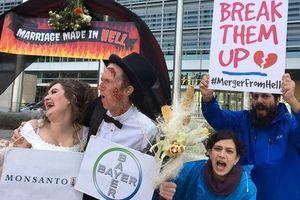 Tai tiếng Monsanto: Cuộc 'hôn nhân' tai hại