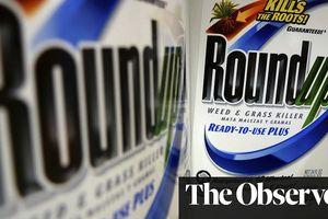 Pháp kêu gọi tẩy chay thuốc diệt cỏ của Monsanto