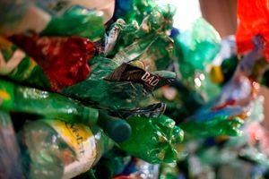 Pháp mạnh tay với bao bì nhựa