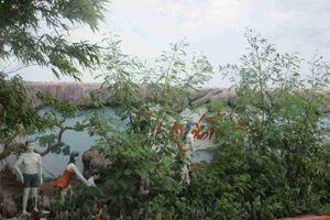 Bình Định: Công viên xanh Đống Đa nhếch nhác, xuống cấp, mất an ninh trật tự vì không ai chịu quản lý?