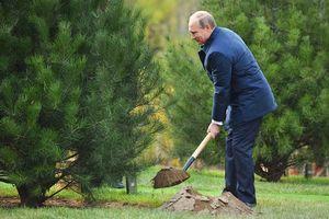 Liên bang Nga và các chiến dịch bảo vệ môi trường