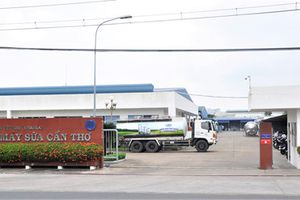 Vinamilk hợp tác đầu tư vào nông trường Sông Hậu, Cần Thơ