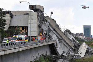 Thảm kịch sập cầu ở Italia: Số người chết lên tới 36 người, giới chức Italia nỗ lực tìm nguyên nhân