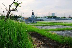 Ninh Bình tái khởi động dự án quảng trường Đinh Tiên Hoàng Đế