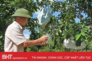 Xã biên giới Hà Tĩnh có 31 mô hình kinh tế thu nhập trên 300 triệu đồng/năm