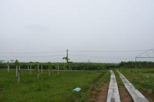 Quyết tâm vì một nền nông nghiệp sạch