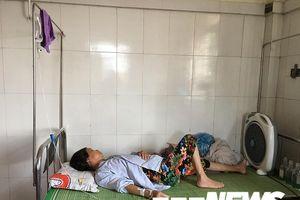 Đi qua tổ ong vò vẽ đầu thôn, 10 người bị đốt nhập viện