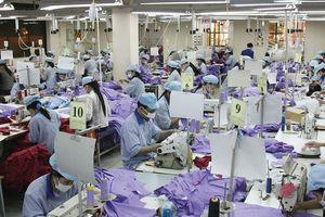 Tìm hướng cải thiện chất lượng hoạt động xuất khẩu
