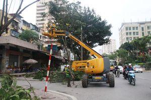Hà Nội hạn chế thấp nhất thiệt hại do bão số 4