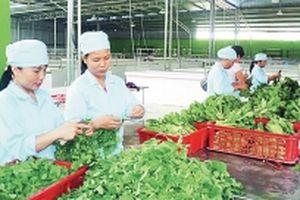 Đạt chuẩn môi trường mới 'cán đích' nông thôn mới