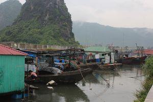 Quảng Ninh: Các địa phương thực hiện công điện khẩn về phòng chống bão số 4