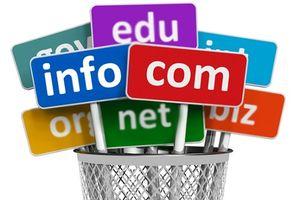 Vi phạm trong cung cấp dịch vụ thông tin trên mạng chủ yếu từ sử dụng tên miền quốc tế