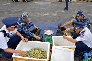 Cảnh sát biển 1 bắt giữ 30 kg pháo nổ