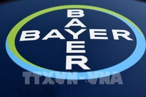 Tập đoàn Bayer sẽ sáp nhập Monsanto vào bất chấp bê bối pháp lý