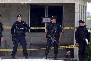 Mexico và Mỹ bắt tay hợp tác tấn công các băng đảng ma túy