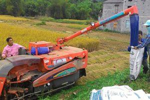 Thái Nguyên: Tạo sự chuyển biến rõ nét về nông nghiệp, nông dân, nông thôn