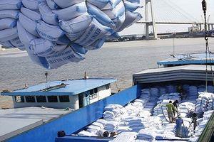Trung Quốc đánh giá cao về cơ sở sản xuất, chế biến gạo của Việt Nam