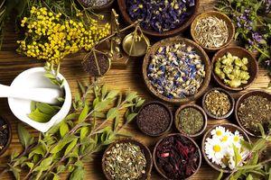 3 loại thảo mộc tự nhiên giúp điều trị sốt hiệu quả