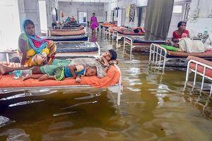 Ấn Độ: 900 người thiệt mạng do mưa lớn