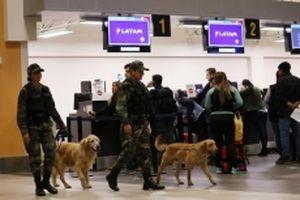 Chín máy bay hạ cánh khẩn cấp tại Nam Mỹ do bị đe dọa cài bom