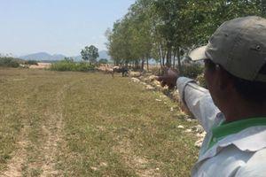 Bắt 3 cán bộ địa chính gom đất nhờ dân nghèo đứng tên nhận đền bù