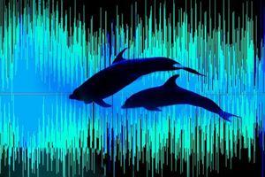 Lập bản đồ âm thanh bằng trí tuệ nhân tạo