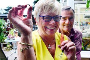 Cặp vợ chồng tìm thấy nhẫn vàng bị mất 12 năm trước trên củ cà rốt