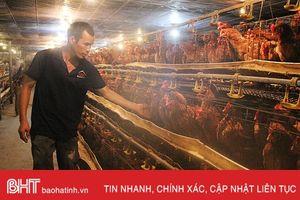 Xã ven đô Hà Tĩnh có 5 mô hình kinh tế thu nhập từ 1 - 3 tỷ đồng