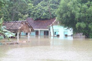Chủ tịch UBND tỉnh Nguyễn Đình Xứng kiểm tra tình hình mưa lũ tại các huyện Thạch Thành và Cẩm Thủy