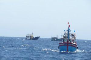 Một tàu cá và 5 thuyền viên của tỉnh Bình Thuận mất tích đầy bí ẩn trên biển