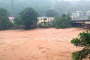 Bão số 4 làm 5 người chết, hàng ngàn ngôi nhà bị ngập tại Nghệ An