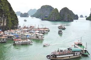 Dừng hoạt động tàu Trang Linh trên vịnh Hạ Long do không an toàn