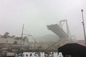 Vụ sập cầu cạn tại Italy: Bắt đầu thu hồi giấy phép của Autostrade