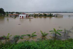Yên Định khẩn trương di dời người và tài sản của người dân vùng ngoại đê đến nơi an toàn