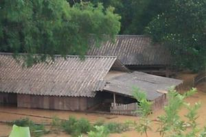 Nghệ An: Chủ tịch các huyện lo lắng vì lũ lên nhanh, rút chậm