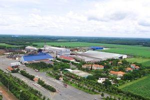 Thành Thành Công mua vào số lượng lớn cổ phiếu SBT