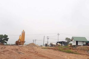 Vĩnh Phúc: Ai đang 'tiếp tay' cho doanh nghiệp phá rừng sản xuất làm trạm trộn bê tông trái phép?