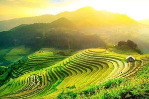 Tuần Văn hóa Du lịch 'Qua miền Di sản ruộng bậc thang Hoàng Su Phì' năm 2018