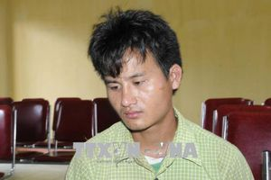 Nghệ An bắt giữ đối tượng vận chuyển 3.000 viên ma túy tổng hợp