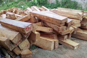 Đắk Nông: Thêm một vụ để mất hơn 4.600ha rừng