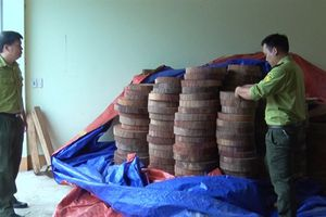 Tạm giữ gần 350 khúc gỗ nghiến dạng thớt