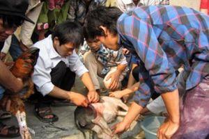 'Cầm tay chỉ việc' dạy nghề cho nông dân