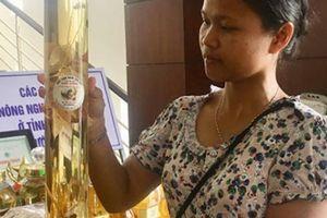 Cô gái Ca Dong thu mua, lập kho dược liệu quý từ núi rừng
