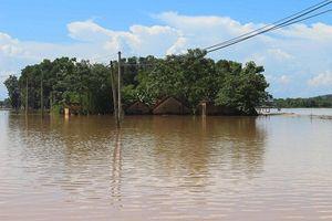 Nghệ An: Người dân vùng hạ lưu vẫn đang sống trong cảnh ngập nặng