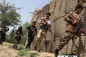 Mỹ từ chối lời mời của Nga về tham gia hòa đàm Afghanistan