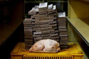 Siêu lạm phát khiến 1 con gà tại Venezuela giá 1,3 triệu đồng