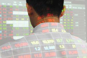 Dùng 12 tài khoản thao túng cổ phiếu, một cá nhân bị phạt 550 triệu đồng