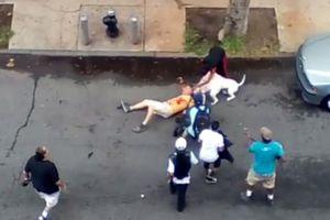 Hà Nội: Ngăn hai chó becgie đánh nhau, chủ nhà bị cắn tử vong